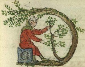 Cambrai, Bibl. mun., ms. 0128, B f. 126 - vue 2